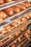 O pão recentemente cozido empilhado e apronta-se empacotando na fábrica Imagem de Stock