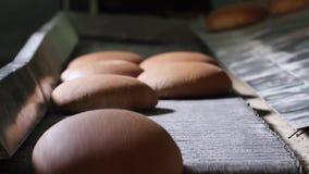 O pão recentemente cozido sai do forno vídeos de arquivo