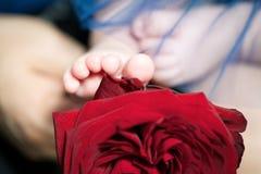 O pé da criança em uma rosa Imagens de Stock