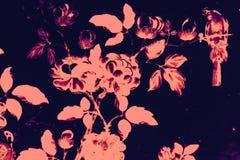 O p?ssaro da ?rvore e as pinturas bonitos da arte das flores colorem o rosa e fundo e papel de parede pretos do teste padr?o da i ilustração stock