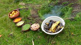 O pachamanca é um ritual ancestral dos indígenas dos Andes fotografia de stock royalty free