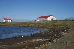 O pagamento na ilha mais desolada Imagens de Stock Royalty Free