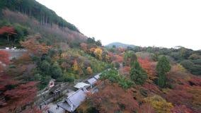 O pagode bonito de Otowa-san Kiyomizu-dera na cor da queda video estoque