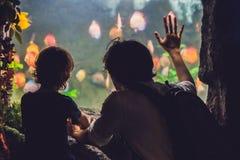 O pai e o filho olham os peixes no aquário no oceanarium fotos de stock royalty free