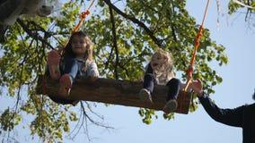 O paizinho agita suas filhas em um balanço sob uma árvore video estoque