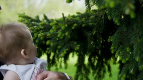 O paizinho está guardando uma filha em seus braços Os alcances da filha para a árvore