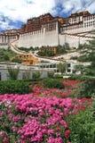 O palácio de Potala imagens de stock