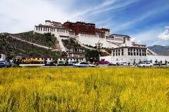 O palácio de Potala em Lhasa, Tibet Imagem de Stock