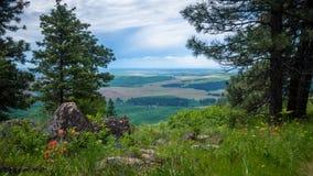 O Palouse, da parte superior do montículo de Kamiak Fotografia de Stock Royalty Free