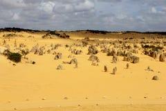 O panorama dos pináculos amarelos abandona, parque nacional de Nambung, Austrália Ocidental Imagem de Stock Royalty Free