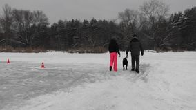 O par anda com o cão no lago congelado perto da floresta durante a queda de neve, opinião da parte traseira vídeos de arquivo