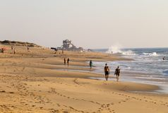 O par anda na praia foto de stock