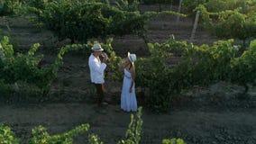 O par atrativo está bebendo as mãos da bebida e do aumento em um campo plantado com uvas, vista aérea video estoque
