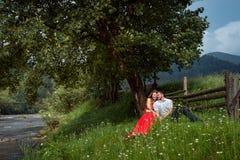 O par de sorriso de encantamento está abraçando ao sentar-se no prado verde da camomila sob a árvore perto da cerca de madeira e Imagem de Stock