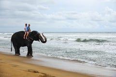 O par novo está montando em um elefante com tronco acima no fundo de uma praia tropical do oceano imagens de stock