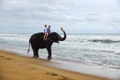 O par novo está montando em um elefante com tronco acima no fundo de uma praia tropical do oceano foto de stock royalty free