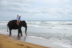 O par novo está montando em um elefante no fundo de uma praia tropical do oceano fotografia de stock royalty free