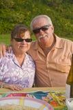 O par sênior aprecia uma orientação do vertical do piquenique fotografia de stock royalty free