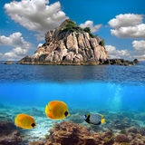 O paraíso e os corais tropicais em um recife cobrem Imagem de Stock