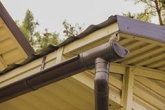O pardal senta-se na calha perto do telhado contra o céu fotografia de stock royalty free