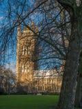 O parlamento atrás das árvores desencapadas foto de stock royalty free