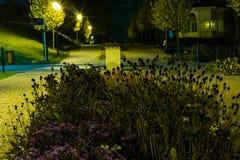 O parque da cidade no cenário da noite com um lugar para descansar a paisagem da cidade da noite estaciona na primavera Bancos, t fotografia de stock royalty free
