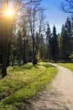 O parque da estrada na primavera Foto de Stock