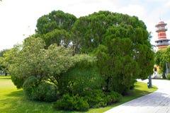 O parque da passagem com arbustos e gramados verdes, Imagem de Stock
