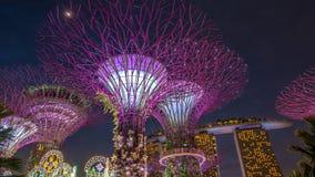 o parque da Super-árvore é marco Singapura na noite a arquitetura da cidade é mostra colorida à iluminação em Marina Bay Sand Fotografia de Stock
