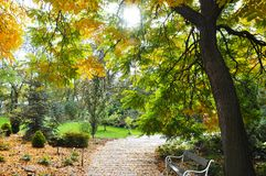 O parque de brilho no jardim botânico na cidade de Teplice Fotografia de Stock Royalty Free