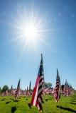 O parque encheu-se com as bandeiras americanas com uma estrela enorme do sol Fotografia de Stock Royalty Free