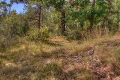 O parque estadual de um estado a outro é ficado situado no St Croix River por Taylo Imagens de Stock