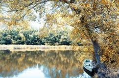 O parque faz o fundo do caminho, Portugal Imagens de Stock Royalty Free