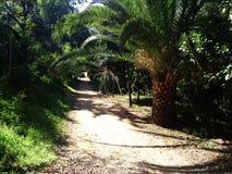 O parque linear em Nicosia é na maior parte solo natural mas algumas áreas são pavimentadas Foto de Stock Royalty Free