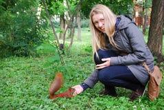 O parque, menina que alimenta um esquilo vermelho. Imagens de Stock Royalty Free