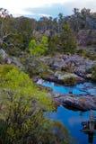 O parque nacional Fotos de Stock Royalty Free
