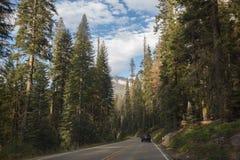 O parque nacional de Yosemite ajardina a estrada no parque nacional de Yosemite Imagens de Stock
