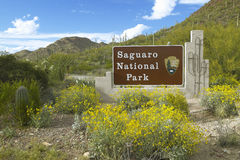 O parque nacional ocidental, Tucson de Saguaro, sinal bem-vindo de AZ caracteriza o cacto do saguaro de Sonoran do gigante Imagem de Stock