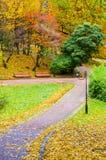 O parque no outono Fotografia de Stock