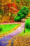 O parque no outono Foto de Stock