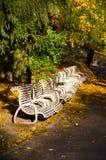 O parque no outono Imagens de Stock Royalty Free