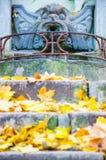 O parque no outono Fotos de Stock
