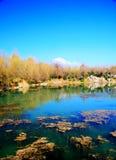 O parque preto da associação do dragão sob Jade Dragon Snow Mountain imagem de stock royalty free