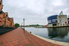 O passeio da margem no porto interno com grande opinião de ângulo do rio de Potapsco naturalizado imagem de stock royalty free