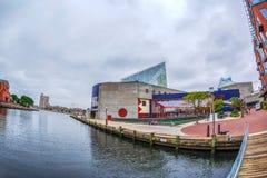O passeio da margem no porto interno com grande opinião de ângulo do rio de Potapsco naturalizado fotos de stock royalty free