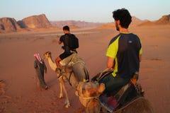 O passeio do camelo conduziu pelo guia do berber em Wadi Rum, Jordânia imagem de stock