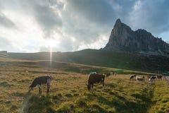O Passo di Giau, nas dolomites italianas fotografia de stock royalty free