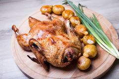 O pato cozeu inteiro, com batatas e alho Fotografia de Stock Royalty Free