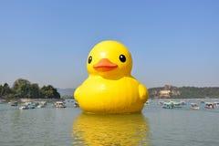 O pato de borracha famoso é exibido no palácio de verão Fotografia de Stock Royalty Free
