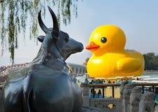 O pato de borracha famoso é exibido no palácio de verão Imagens de Stock Royalty Free
